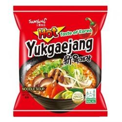 Samyang Noodles Box 20x120g Yukgaejang Hot Mushroom Flavour Ramyun Korean Noodles