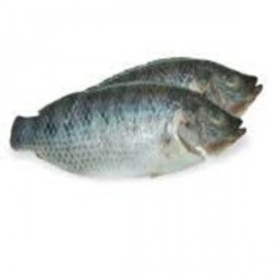 Kim Son Whole Cleaned Black Tilapia 600-800g Cá Rô Phi...