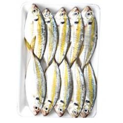 Kim Son Yellow Stripe Trevally 1kg Cá chỉ vàng Frozen...