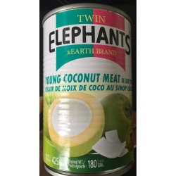 Twin Elephants & Earth Brand 425g Young Coconut Meat in Light Syrup