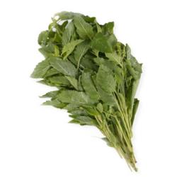Talard Thai 100g Holy Basil Leaf