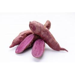 Zing Asia Purple Sweet Potatoes 80g-100g Purple Sweet Potatoes
