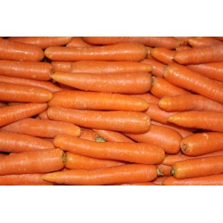 Zing Asia Carrot Loose 1kg...
