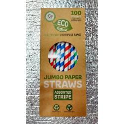 Eco Friend 100 Jumbo Paper Straws (Assorted Stripe)