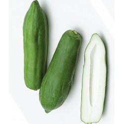 Fresh Thai Green Papaya 1kg For Making Thai Green Papaya Salad